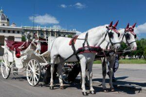 Wien - Fiaker eine beliebte Touristenattraktion