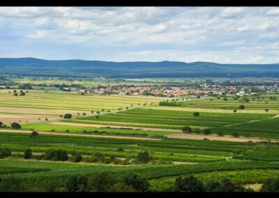 Burgenland - Oslip - Gemeinde und Landschaft