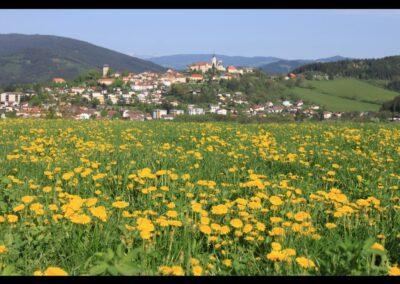 Kärnten - Althofen