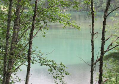 Kärnten - Jägersee der Bruder des Tappenkarsees