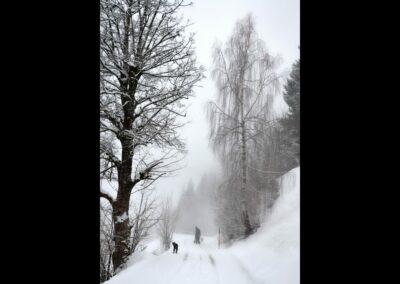 Kärnten - Winterlandschaft in Kärnten