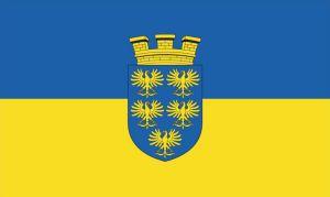 Niederösterreich Fahne mit Wappen