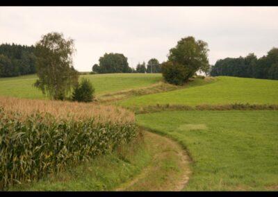 Niederösterreich - Landschaftsaufnahme