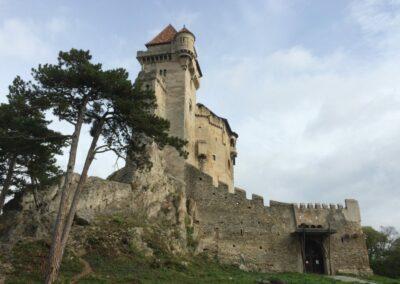 Niederösterreich - Maria Enzersdorf - Burg Liechtenstein
