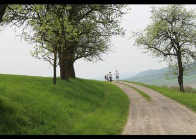 Niederösterreich - Spaziergang in der schönen Wachau