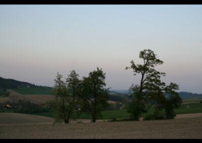 Oberösterreich - Landschaft um Pichl bei Wels 3
