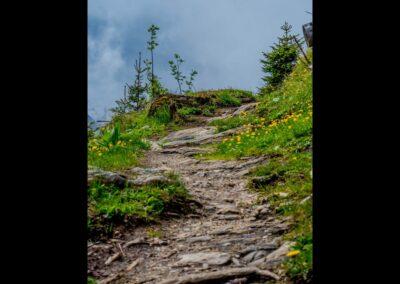 Sbg - Bergwandern in Salzburg