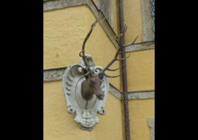Sbg - Salzburg - Wasserscherzhirsch im Schlosspark Hellbrunn