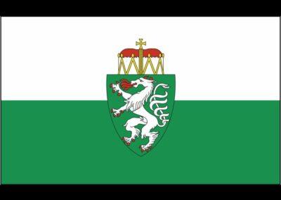 Steiermark Fahne mit Wappen
