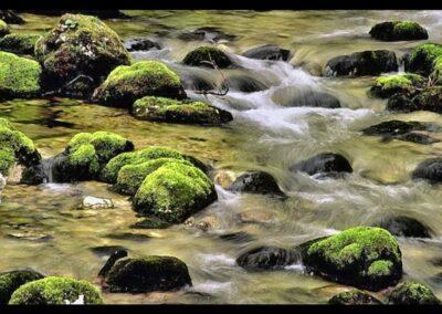 Stmk - Am Wildbach
