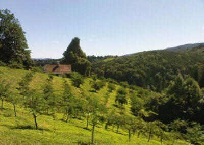 Stmk - Hügellandschaft der Südsteiermark
