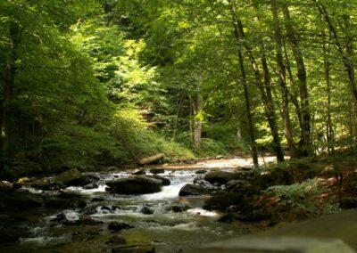 Stmk - Landschaft in der Steiermark 2