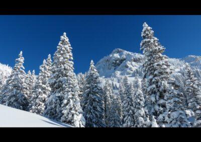 Tirol - Läuferspitze in den Allgäuer Alpen