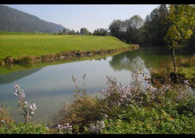 Tirol - Landschaft am Walchsee
