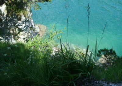 Tirol - Ufer des Achensees