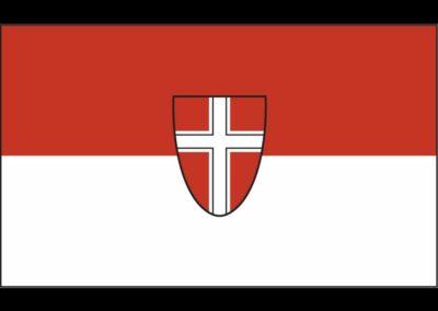 Bild zeigt: Wien - Fahne mit Wappen