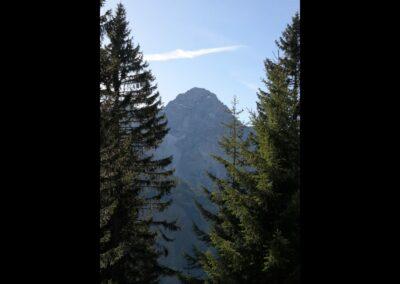Bild zeigt: Großer Widderstein 2