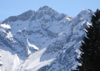 Bild zeigt: Großer Widderstein