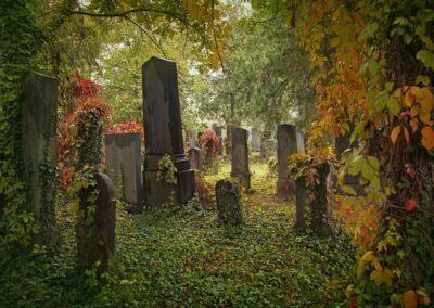 Bild zeigt: Wien - 9. Bezirk Alterjüdischer Friedhof Alsergrund
