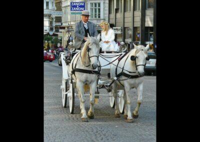 Bild zeigt: Wien - Kutschenfahrt in Wien