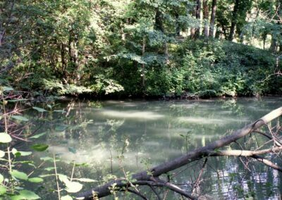 Bild zeigt: Wien - Naherholungsgebiet Schwarzenbergpark