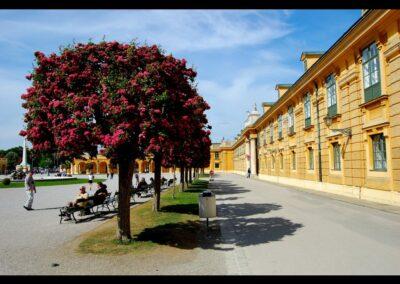 Bild zeigt: Wien - Seitengebäude beim Eingang Schönbrunn