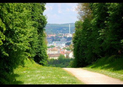 Bild zeigt: Wien - Wanderweg im Schlosspark Schönbrunn